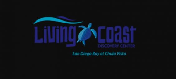 Field trip to Living Coast Discovery Center